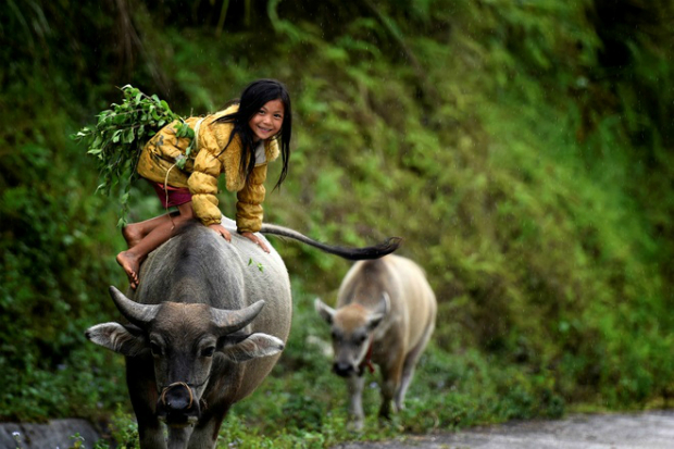stunning-ha-giang-in-pictures-4