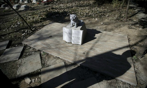 Move over Mao: Beijing's tomb sweepers preen pampered pets' graves