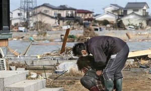 Strong 6.0-magnitude quake hits off Japan coast; no tsunami
