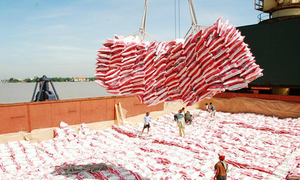 Vietnam's rice export price falls amid global hikes