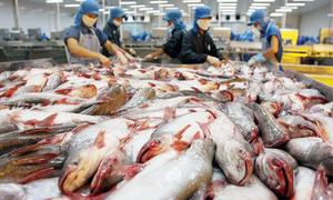 Vietnam boosts catfish exports to U.S., China, Brazil