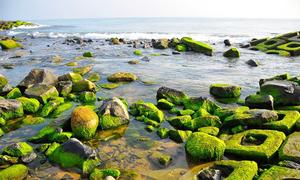 The 7 natural wonders of Phu Yen