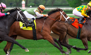 Hanoi considers building $500 mln horse racing, golf course complex