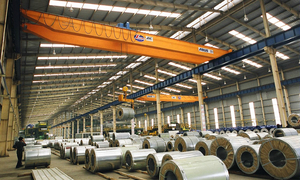 Vietnamese group to build $10 bln steel plant on south coast