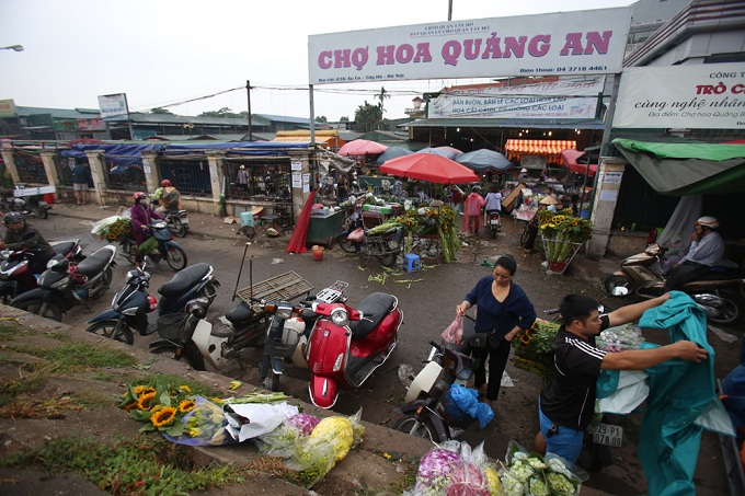 Quang An Flower Market, the biggest hub for flowers in Hanoi, lies on Nghi Tam Street near the West Lake, attracting both locals and curious foreign tourists.
