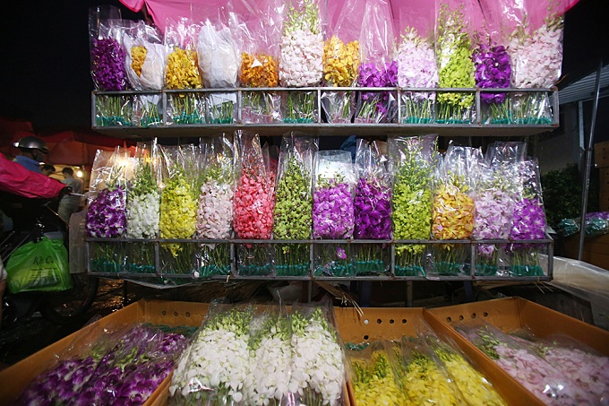 Foreign orchids packaged in cardboard box and arriving in freezer can be found here.