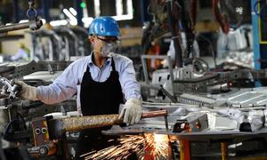 From field to factory: Vietnam's globalization winners