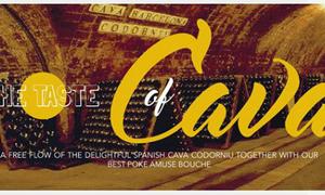 The taste of Cava at 88 Lounge