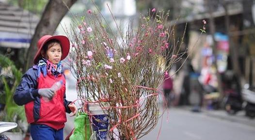 Working Women of Vietnam Exhibition