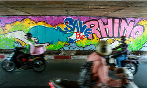 Colorful rhinos storm Saigon alleys with a message: save them