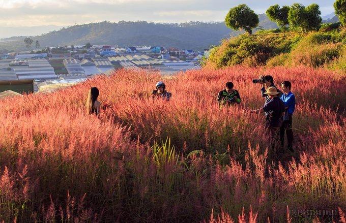pitch-a-tent-and-light-a-bbq-at-vietnams-top-hillside-getaways-9