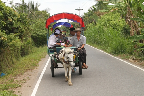 from-river-markets-to-tropical-orchards-take-a-taste-of-vietnams-tien-giang-1