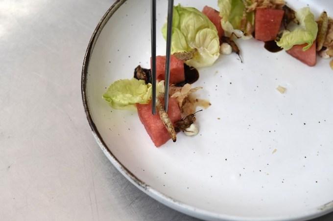 gourmet-grub-thai-fine-diners-explore-insect-cuisine