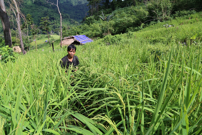 climbing-into-vietnams-mountains-where-rice-grows-in-the-skies-3