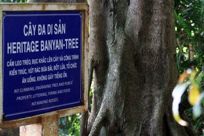 unesco-affiliate-barks-as-vietnam-calls-its-culture-titles-illegal