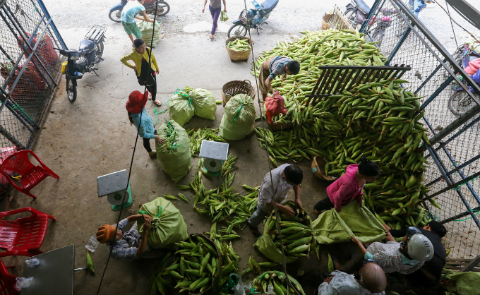 its-all-about-corn-at-this-market-in-saigon