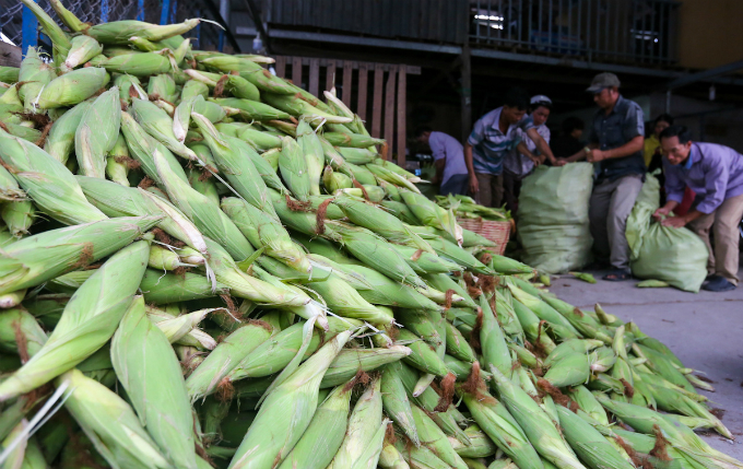 its-all-about-corn-at-this-market-in-saigon-1