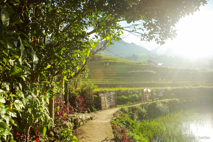 SP8 8020 1507712061 8293 1507796695 - Finding a true beauty of Sa Pa on the roof of Vietnam