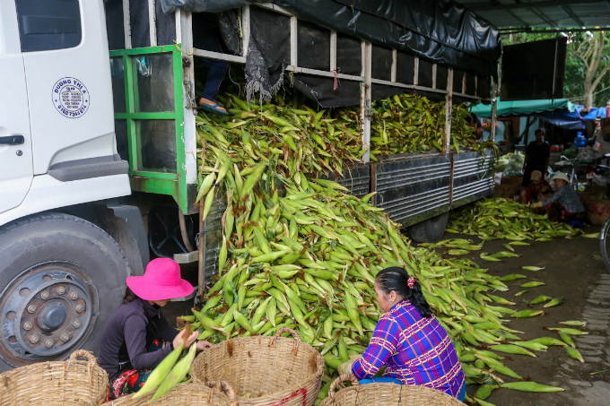 its-all-about-corn-at-this-market-in-saigon-3