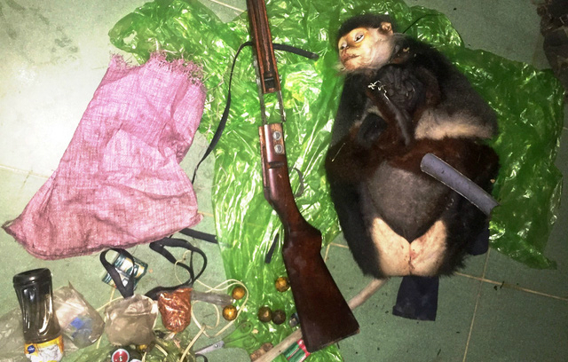 Police hunt for two suspects after endangered monkey shot dead in Vietnam