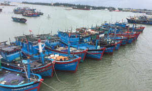 EU gives Vietnam 'yellow card' over illegal fishing