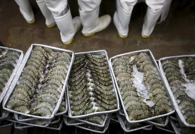 Vietnam fights US anti-dumping tariff on shrimp exports