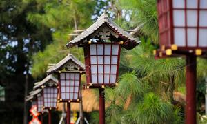 Vietnamese temple or Japanese shrine? Spirited away in a Saigon pagoda