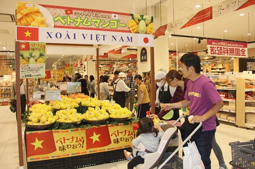 Tropical delicacy: Vietnamese agricultural products rack in big cash at global markets - 8