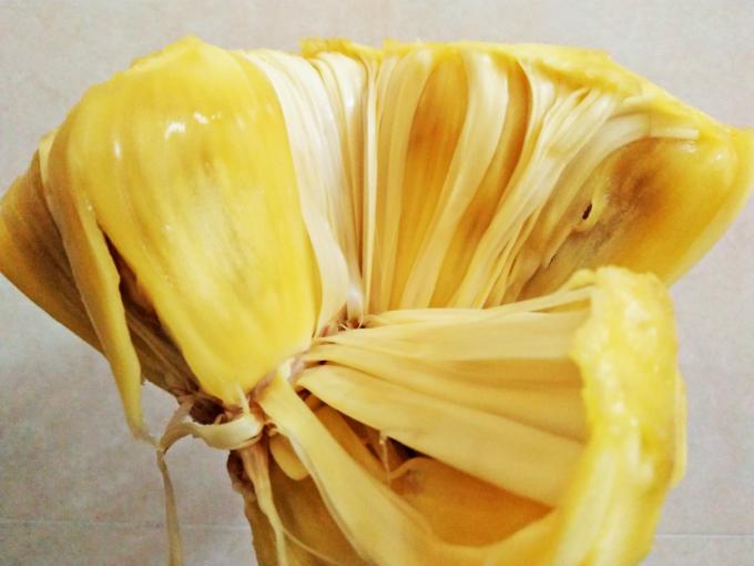 The white thin layer of xo mit in between jackfruit flesh.