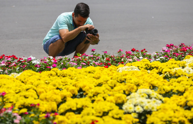 New flower garden adds flourishing charm to Saigons famous cathedral - 7
