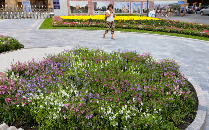 New flower garden adds flourishing charm to Saigons famous cathedral - 2