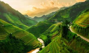 Two Vietnamese locales get autumn stars