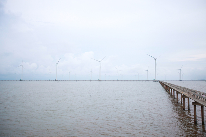 Visitors enjoy the breeze at Vietnams first and biggest wind farm - 6