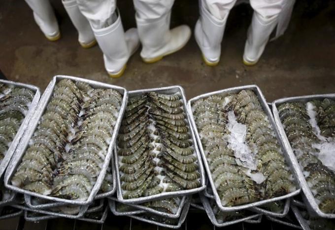 Rising dollar, market glut cut Vietnam's shrimp export value
