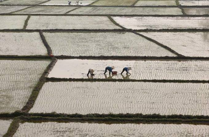 Vietnam urges China to import more agriculture produce