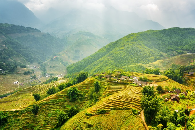 Rice terraces in Sa Pa town. Photo by Shutterstock/Efired