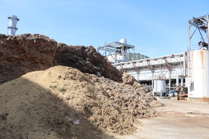 Vietnam has huge biomass potential, but policy tweak needed - VnExpress  International