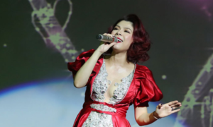 Vietnamese pop star to mark silver jubilee with US concert