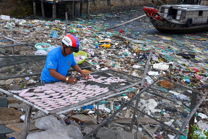 A man was drying fish among trash in Can Gio in suburban Ho Chi Minh City. Photo by Nguyen Viet Hung