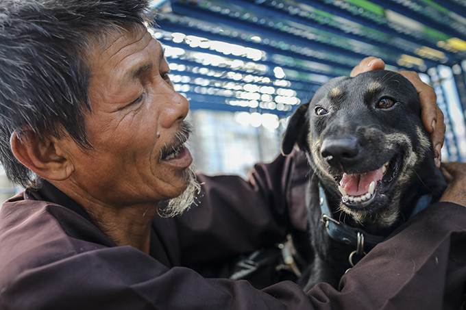 Homeless man dedicates life to rescuing dogs slated for slaughter - 7