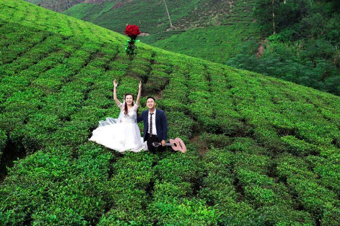SENT TO HARI- Explore the tea kingdom and tourist hotspots in northern province - 2
