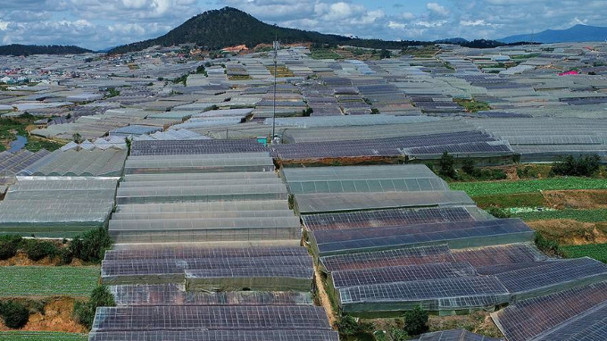 Agricultural greenhouses in Da Lat, October 2018. Photo by VnExpress/Giang Huy.