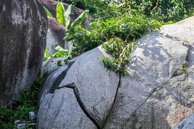 A pile of rocks in Dong Nai defy gravity for centuries - 5