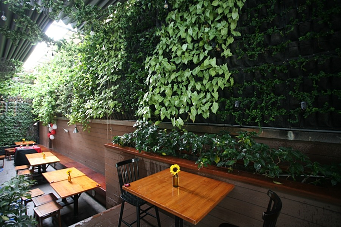 A garden on the wall that is a café in downtown Saigon - 2