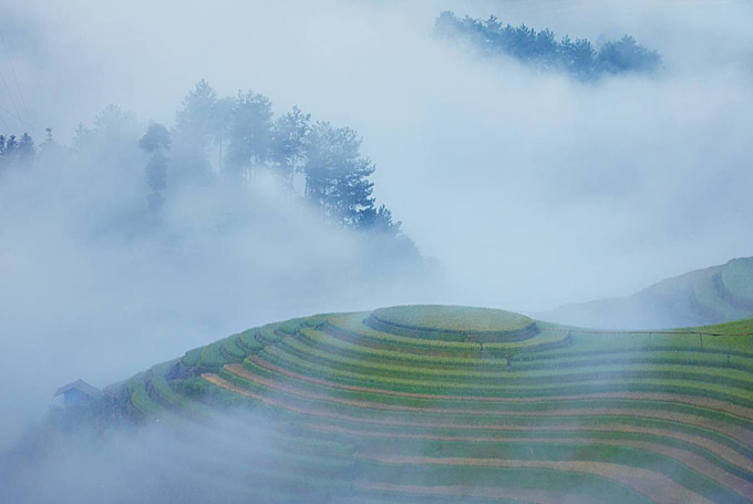 A photo of Mam Xoi Hill in Mu Cang Chai District in mist at 6 a.m.This field, which is part ofLa Pan Tan Village, hasbecame a symbol of Mu Cang Chai, making its a must-stop-bydestination foranyone who visits this upland area.