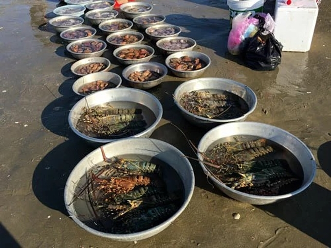 In central Vietnam village, fresh seafood is sold by the basin