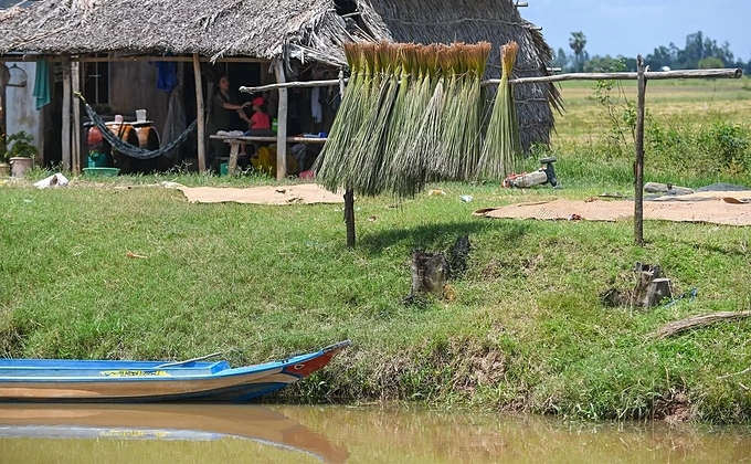 Bunches of sedge are hung in front of peoples homes in Tran The hamlet, Phu My commune. Walking along the canal by the commune on sunny days, visitors can see people drying and weaving handicrafts on their porch.
