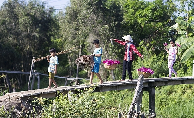 A woman carries a bamboo shoulder polewith water lilies to a market.