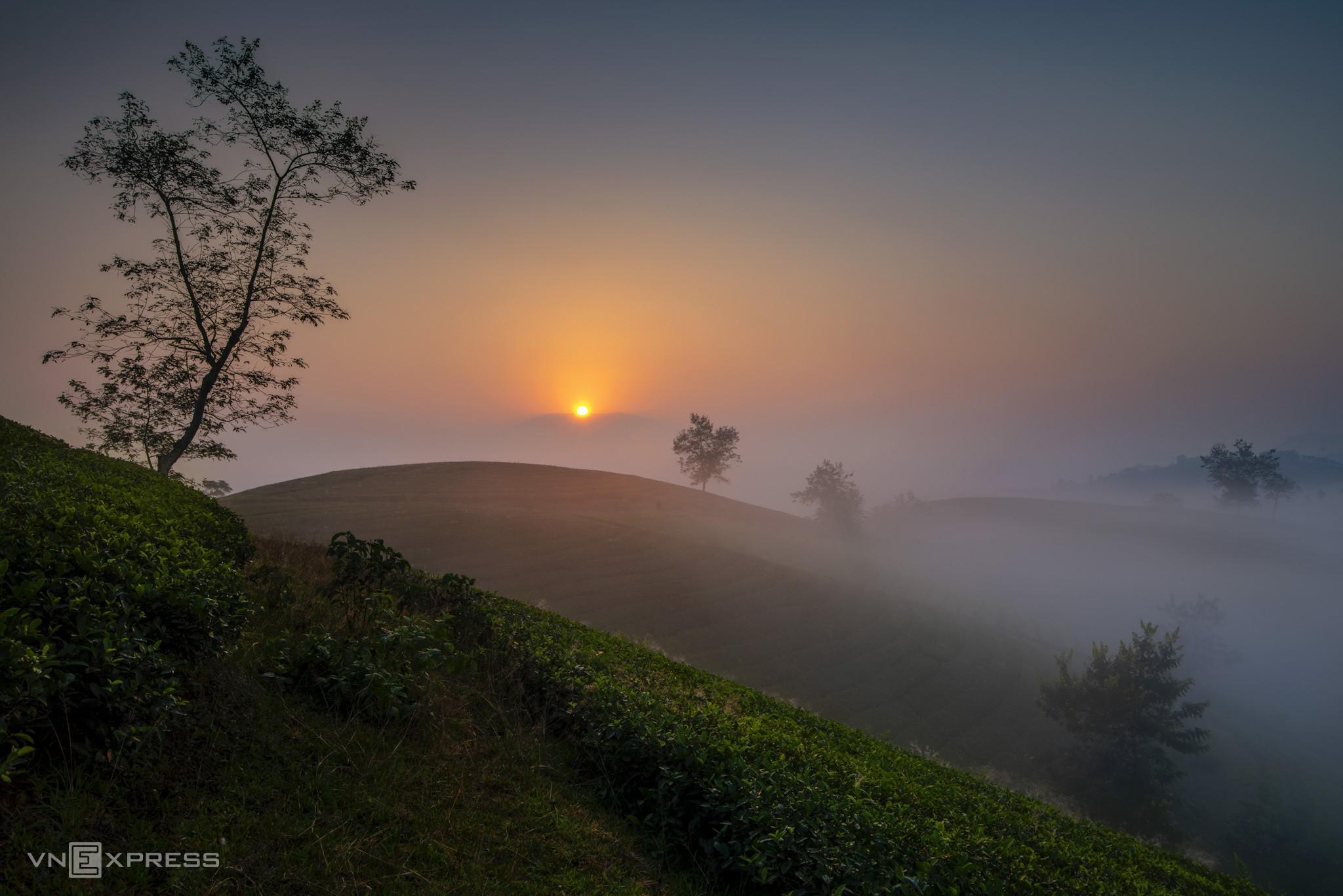 Long Coc tea hills turn lovelier as season change brings mist