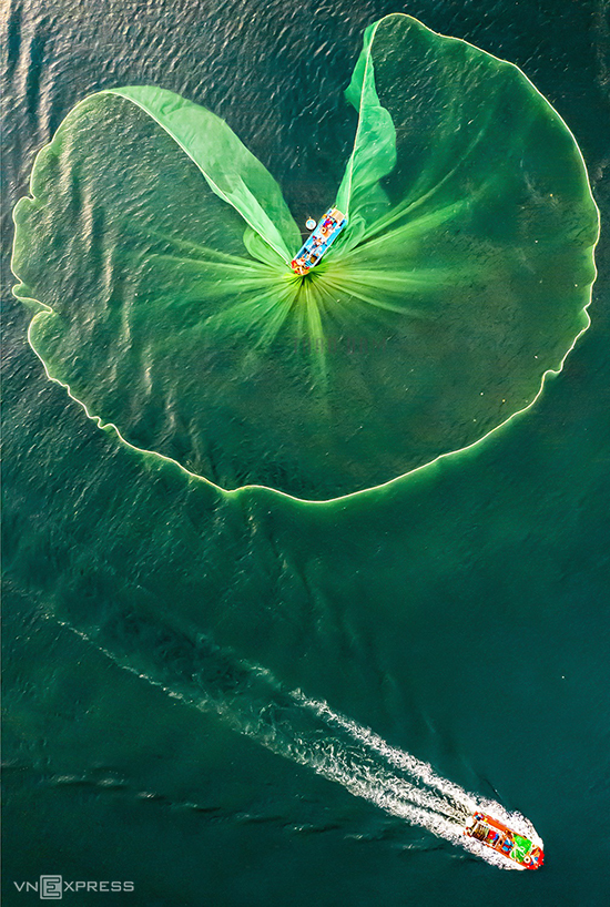 The photo named Net flowers shows a fisherman catching anchovies in Hon Yen of Phu Yen Province. Hon Yen is located in Nhon Hoi village, An Hoa commune, Tuy An district, about 20 km northeast of Tuy Hoa city. Visitors in Hon Yen will have the opportunity to experience the fishing village tourism, see the busy traffic on the sea and the fishermen rushing to work in the early morning and afternoon.